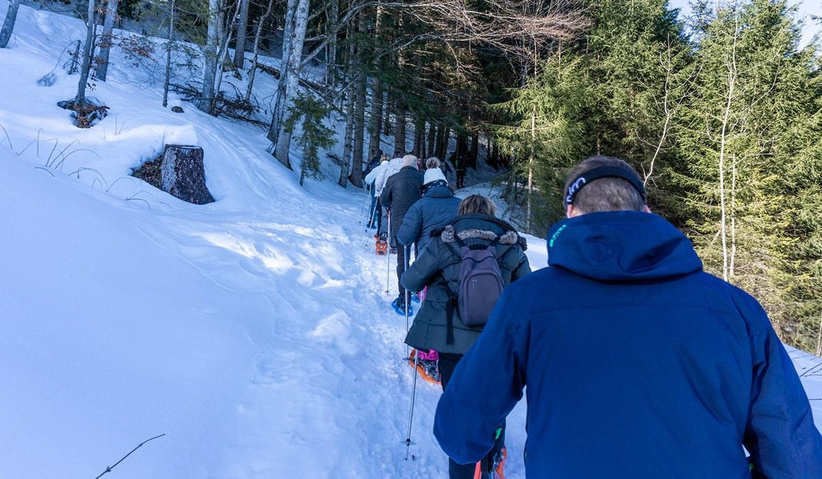 randonnée raquette en haute savoie alpes du nord