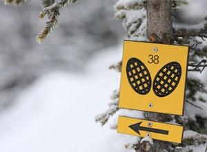 randonnee raquette en station de ski
